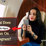 What Does Public Figure Mean On Instagram?